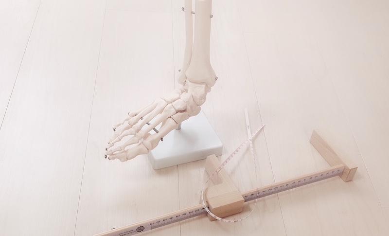 足の骨格標本とフットゲージ